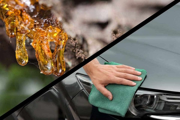 Remove Tree Sap From Your Car