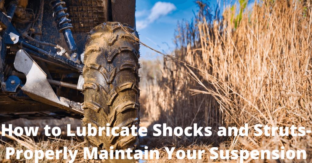 lubricate shocks and struts